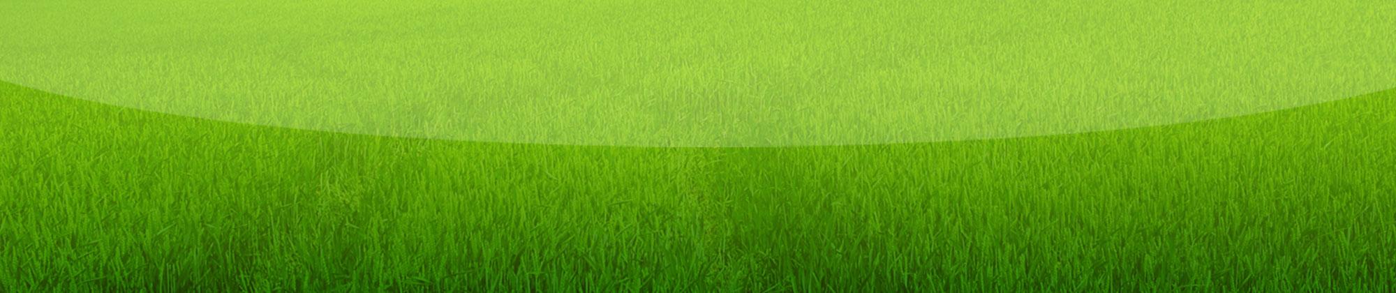 grass-background1